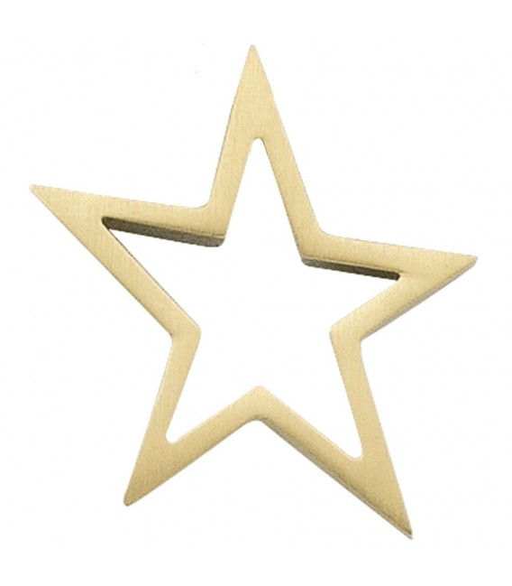 Anhänger Stern 585 Gold - 4053258044179